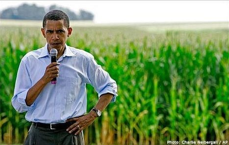 President Obama Challenged on 2007 GMO Labeling Promise | Searching for Safe Foods | Scoop.it