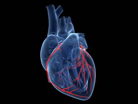 Google Aims a $50 Million Moonshot at Curing Heart Disease | The future of medicine and health | Scoop.it