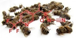 L'Europe et le sulfoxaflor : chronique d'une bataille annoncée | Le monde des abeilles | Scoop.it