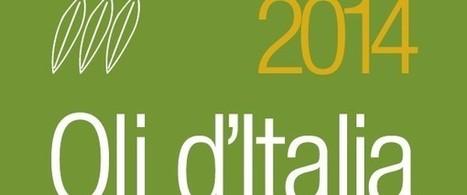 Oli d'Italia 2014 del Gambero Rosso, è siciliano il miglior biologico d'Italia   Sicily ...food, drink, history,holiday   Scoop.it
