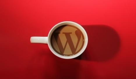 Temi WordPress | Dove trovare i migliori template professionali? | Web Hosting | Scoop.it