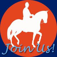 Wow! Exmoor Pony Club is an ESMA Finalist! Can you please vote ...   Exmoor Pony Club   Scoop.it