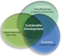 How to achieve environmental sustainability? | sustainability | Scoop.it