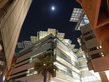 À quoi ressemblera la ville de demain ? | D'Dline 2020, vecteur du bâtiment durable | Scoop.it