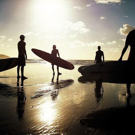 Le surf, un attrape-logo ?   Identité visuelle   Scoop.it