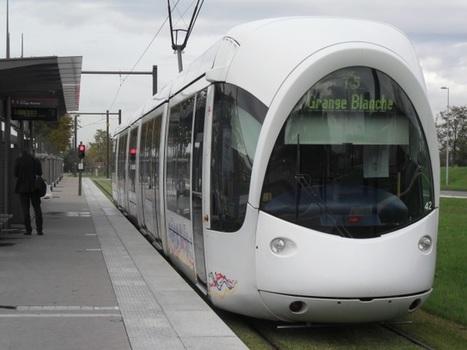 Un piéton percuté par un tramway près de Lyon | L'actu des tramways | Scoop.it