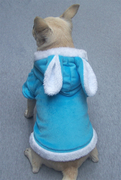 Cute Bunny Dog Hoodie – PetSuperDeal.com | petsuperdeal | Scoop.it