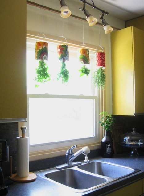 Create a hanging herb garden | Upcycled Garden Style | Scoop.it