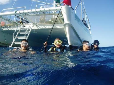 Hawaii Scuba Diver reservations | ❀ hawaiibuzz ❀ | Scoop.it