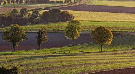 INRA: les 10 enjeux qui vont révolutionner l'agriculture | la presse AGRIcole | Scoop.it