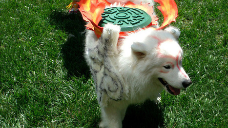 The Wonderful World Of Dog Cosplay | Cosplay News | Scoop.it