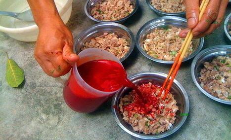Hướng dẫn cách đánh ( hãm ) tiết canh vịt ngon, đông sánh | Mật ong Hưng Yên | Scoop.it
