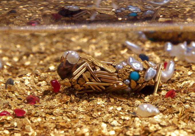 inspiration - Artist Hubert Duprat Collaborates with Caddisfly Larvae as They Build Aquatic Cocoons from Gold and Pearls