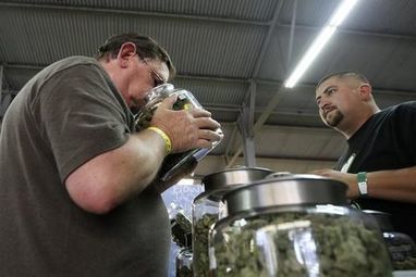 California gets go-ahead to vote on legalization of marijuana Video   Archaeology, Culture, Religion and Spirituality   Scoop.it