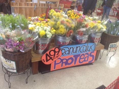 Get organic food from Trader Joe's! | Food | Scoop.it