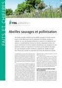 Abeilles sauvages et pollinisation - FiBL | Graines de doc | Scoop.it