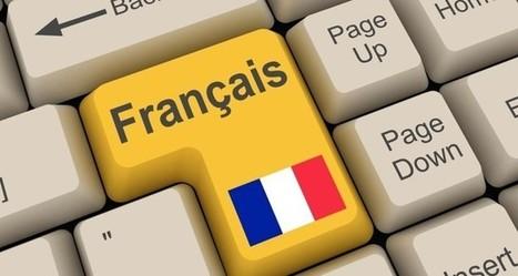 Les DSI français se démarquent de leurs homologues étrangers | Enterprise 3.0 | Scoop.it