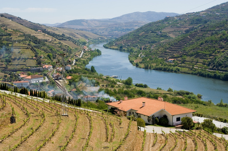 The Best Travel Destinations for #Wine Lovers in 2016 | Vitabella Wine Daily Gossip | Scoop.it