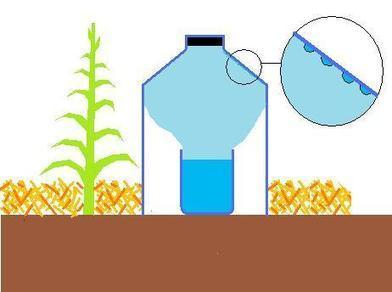 La technique darrosage goutte à goutte solaire | sitiosolar.com | Design de permaculture | Scoop.it