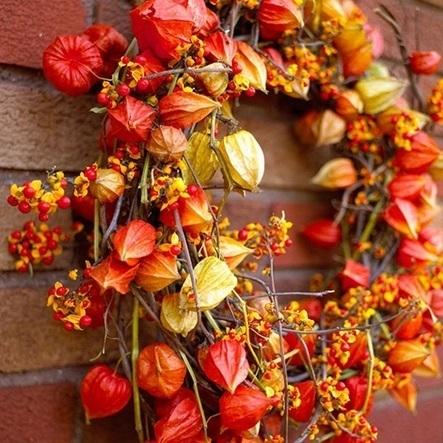 autumn_berry_lantern_wreath.jpg (522x522 pixels)   Autumn wedding ideas   Scoop.it