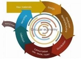 Stati generali della green economy, le novità su rifiuti e responsabilità estesa del produttore - Greenreport: economia ecologica e sviluppo sostenibile | Energia, Ambiente e Green Economy | Scoop.it