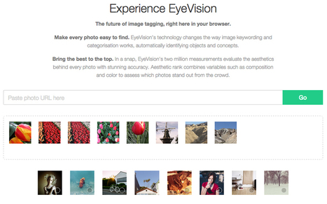 EyeEm wants its new EyeVision algorithm to be the Google of photography | Social Foraging | Scoop.it