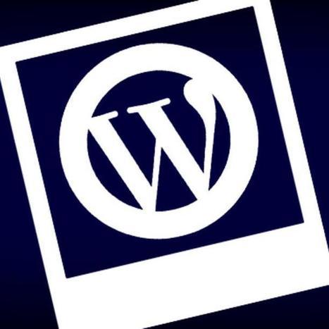 The Beginner's Guide to WordPress Multisite   working with Wordpress   Scoop.it