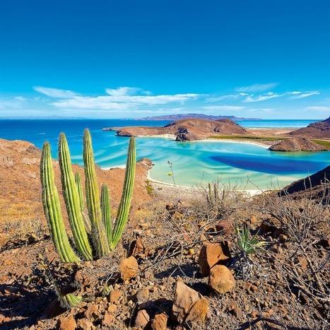 Discovering Baja California - Financial Times   Baja California   Scoop.it