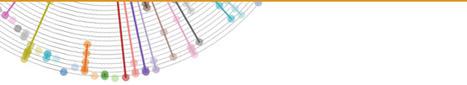 IBM Visualization - Publications | Thinking eVisualization | Scoop.it