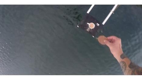 Un Anglais trempe un biscuit dans du thé lors d'un saut de plus de 70 mètres | L'Angle de la Terre and Co | Scoop.it