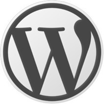 7 Essential Tips for WordPress Beginners | WEBOLUTION! | Scoop.it