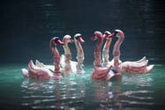 Marionnettes sur l'eau du Vietnam | Magic digest : art & creation | Scoop.it