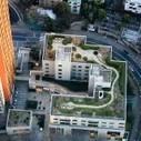 Rooftop Gardens a Part of Paris' Biodiversity Push | Sustainable Futures | Scoop.it