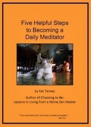 Five Helpful Steps to Becoming a Meditator | The Promise of Mindfulness Meditation | Scoop.it