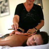 Horse reiki and bull sperm hair masks: 9 bizarre spa treatments - CNN Travel | Spa Treatment Linwood | Scoop.it