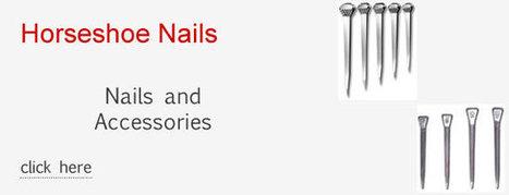 Anvil Brand Shoe Company | Pets | Scoop.it