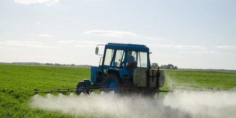 Des pistes pour consommer moins de phytosanitaires en France | Agriculture en Dordogne | Scoop.it