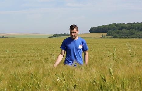 Moins d'intrants, plus d'agronomie ! | Agronomie sur le web | Scoop.it