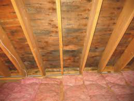 Attic Cleaning Services San Francisc | Cleaning service provider in USA | Scoop.it