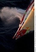 Sea and Co, The Marine Photo Library - Go Kito ! | #AC34 | Scoop.it