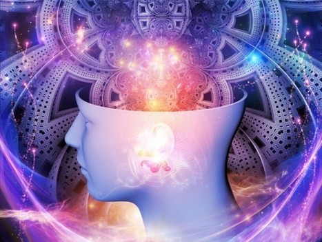 The Collective Brain: We Are One | Conscious evolution | Scoop.it