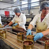 Discriminations au travail : un rapport préconise la création d'«actions collectives»   Ressources humaines   Scoop.it