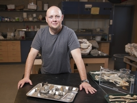 MSU paleontologists discover evidence of new types of dinosaurs in Idaho including tyrannosaur ancestors | Science and Global Education Trends | Scoop.it