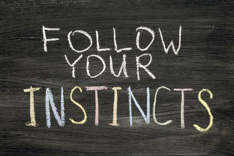 Your company should follow its instincts | The Key To Successful Leadership | Scoop.it