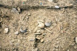 Three J2 found at Merovingian buriel site (Roman-Frankish transitional period) | J2-M172 | The Merovingian Kingdoms | Scoop.it