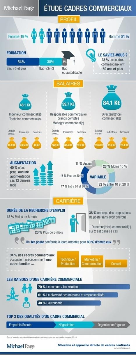 Infographie   Le profil des cadres commerciaux en chiffres   Veille Biz Dev   Scoop.it
