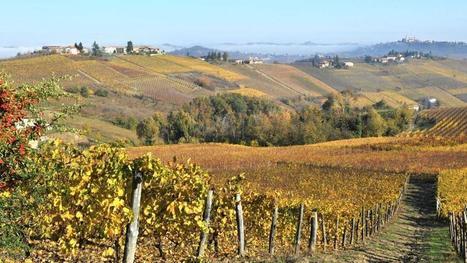 Le regioni viticole d'Europa si incontrano ad Asti | Vino e dintorni: a proposito di vini, bottiglie, tappi, etichette, bicchieri, il vino in cucina e... | Scoop.it