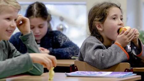 Vakdocenten mogen ook op basisschool les gaan geven | E-learning, Blended learning, Apps en Tools in het Onderwijs | Scoop.it