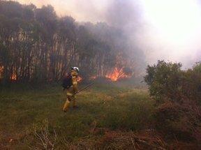 Tweet from @NSWRFS | NPWS fire management | Scoop.it