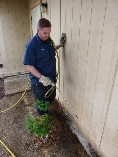 شركة مكافحة النمل الابيض بالرياض - 0532144004 - شركة النقاء | شركة النقاء للخدمات المنزلية تنظيف منازل - مكافحة حشرات - نقل اثاث - كشف تسربات | Scoop.it